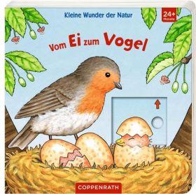 Vom Ei zum Vogel