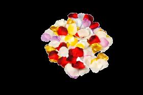 VE Blütenblätter gemischt, ca. 100 Stück
